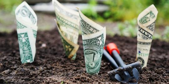 Connaissez-vous les opportunités de la loi PACTE pour optimiser vos revenus ?